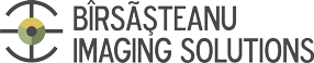RMN TIMISOARA Logo